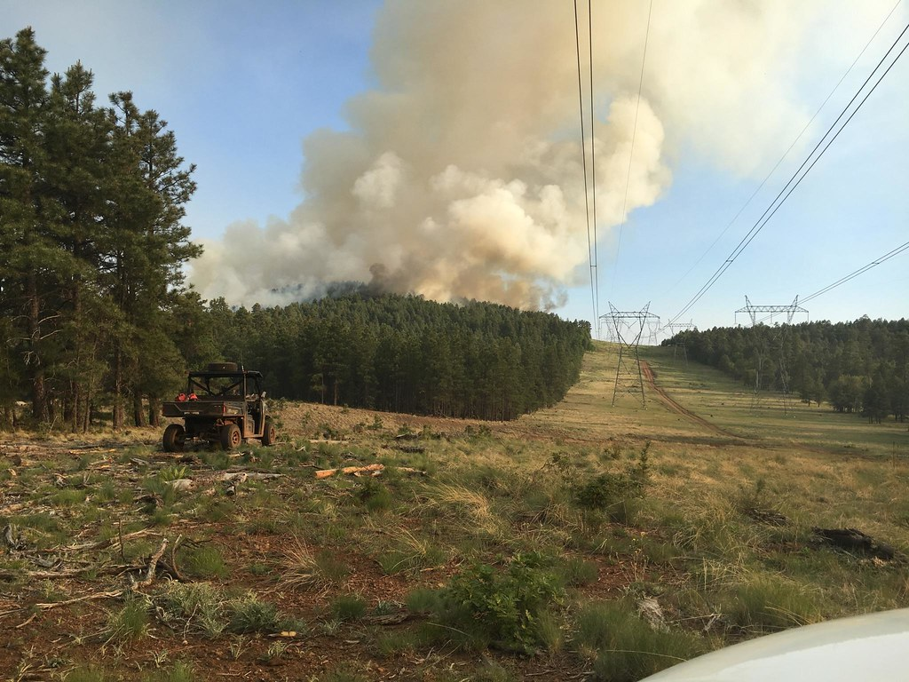 Operations are directed with the intent to protect public values. Here, burn operations were performed along the high voltage kV powerline (WAPA) to mitigate smoke impacts when the wildfire appraches. (2016 Adams/USFS)